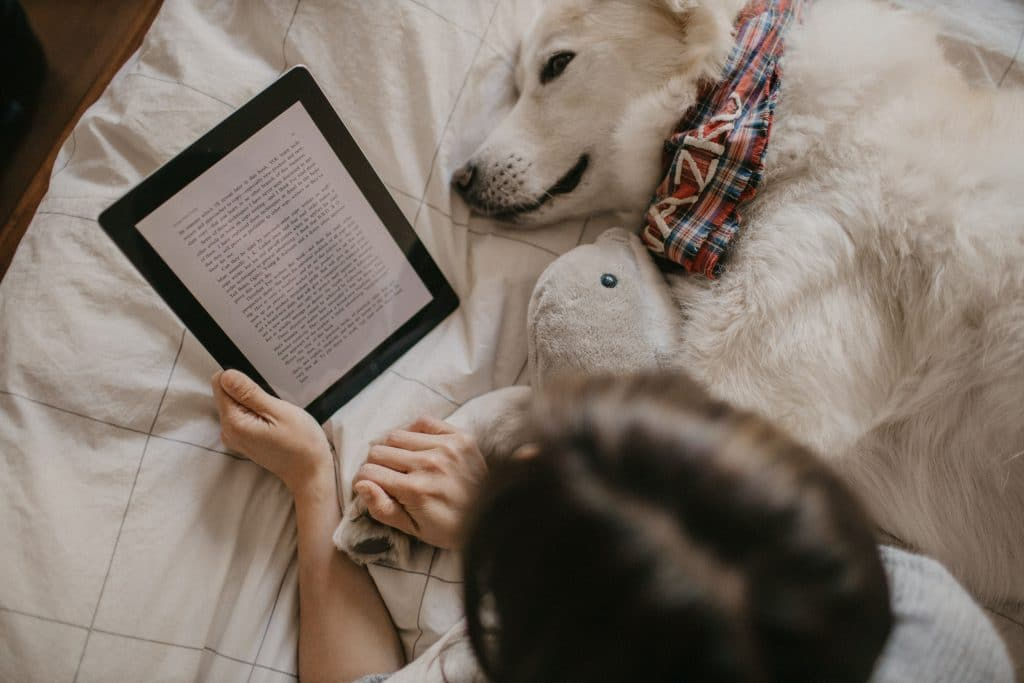 Reading an E Book on the bed with dog